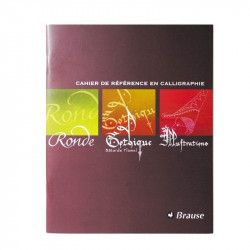 Cahier d'initiation à la calligraphie ( Ronde, Gothique, Illustrations )