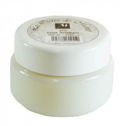 Liant acrylique Ocres Manet 100ml